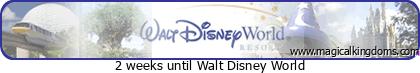 (3ème Partie) Demande en mariage devant Mickey/Voyage de noces WDW et Cruise Line/Disneyland Paris (Défilé en Limousine, Dîner dans le Château de la Belle au bois dormant)/Quelques nouvelles 3 ans après - Page 3 N27t5mqz3nig8ypz