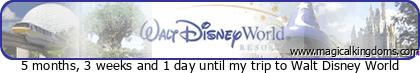 Visite express de Walt Disney World: Magic Kingdom ou les autres parcs? N27t5mqz41tt3t7j