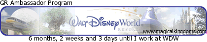 Disney Channel CyberSpace (dont CyberSpace Mountain) (2002-2007) N27tx4mxjc024iwo